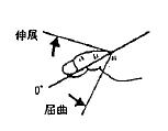 足指の屈曲(MTP)/伸展(MTP)の参考図