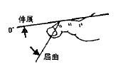 足指の屈曲(PIP)/伸展(PIP)の参考図