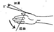 母指の屈曲(IP)/伸展(IP)の参考図