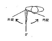 肩の外旋/内旋の参考図