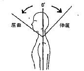 頸部の屈曲(前屈)の参考図