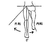 股の外転/内転の参考図