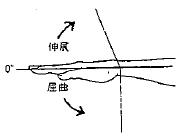 手の屈曲/伸展の参考図