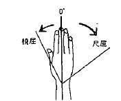 手の撓屈/尺屈の参考図